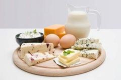 белковые продукты белковой диеты