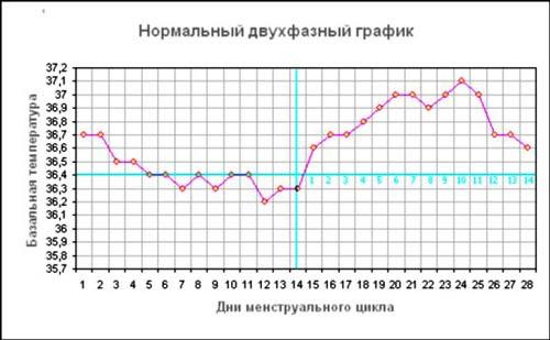 какая базальная температура перед месячными. график