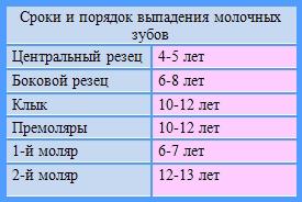 В таблице на фото показано в каком возрасте происходит выпадение молочных зубов у детей.