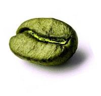 почему худеют от зеленого кофе