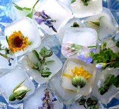 лед с травами